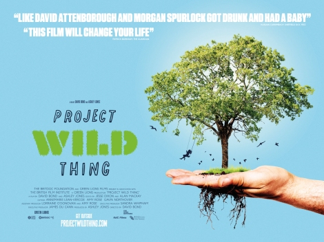 Quad_AW_Project-Wild-Thing